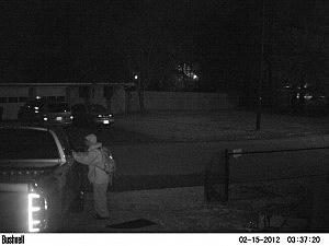 Auto Burglar