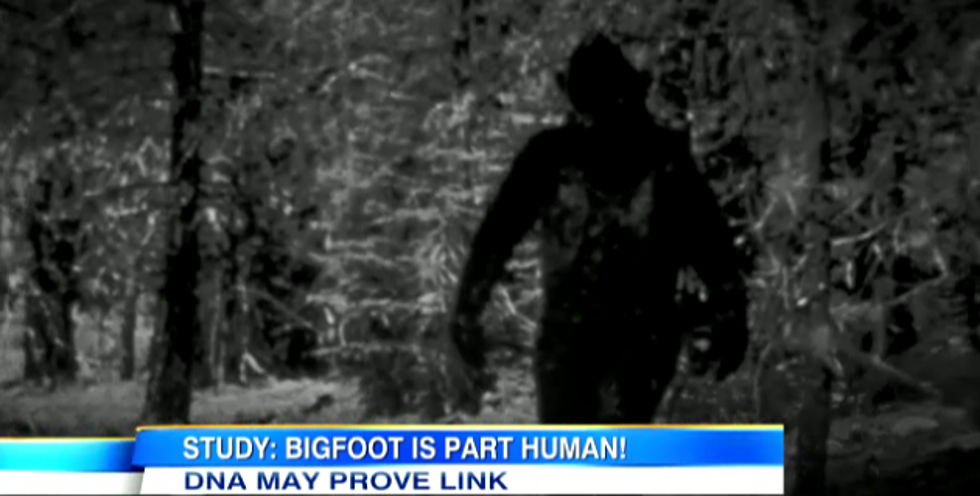 Does bigfoot exists scientist say they have dna proof video poll sciox Images