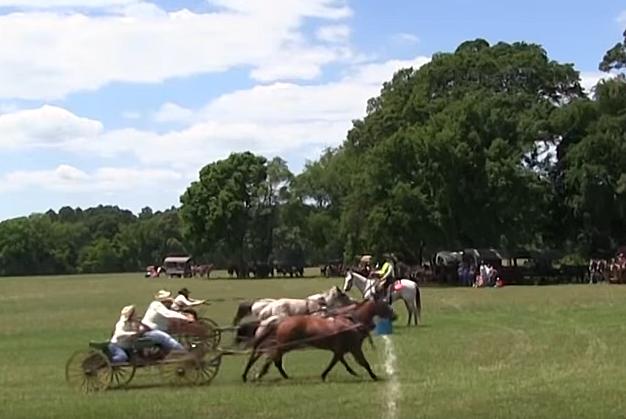 The 1836 Chuckwagon Race via Youtube