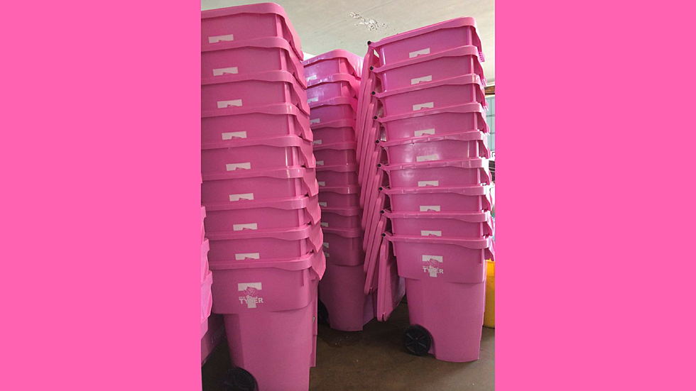 Well-known Purchase a Pink Trash Can in Tyler for Breast Cancer Awareness Month BF86